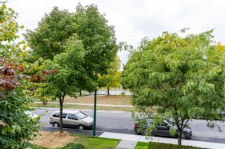 """Photo 34: 203 6198 ASH Street in Vancouver: Oakridge VW Condo for sale in """"The Grove 6198 Ash"""" (Vancouver West)  : MLS®# R2614969"""