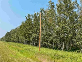 Photo 7: RGE RD 223 Twp Rd 594: Rural Thorhild County Rural Land/Vacant Lot for sale : MLS®# E4256609
