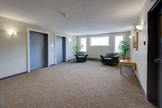 Photo 3: 204 237 YOUVILLE Drive E in Edmonton: Zone 29 Condo for sale : MLS®# E4237985