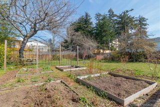 Photo 31: 1690 Kenmore Rd in VICTORIA: SE Gordon Head House for sale (Saanich East)  : MLS®# 810073