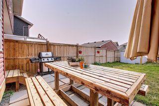 Photo 11: 95 Auburn Meadows Heath SE in Calgary: Auburn Bay Semi Detached for sale : MLS®# A1134082