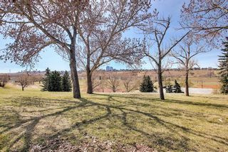 Photo 35: 1435 16 Street NE in Calgary: Mayland Heights Detached for sale : MLS®# A1099048