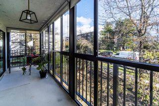 Photo 14: 305 1170 Rockland Ave in : Vi Rockland Condo for sale (Victoria)  : MLS®# 866972
