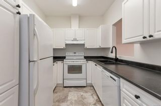 Photo 2: 104 280 S Dogwood St in : CR Campbell River Central Condo for sale (Campbell River)  : MLS®# 882348