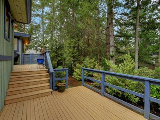 Photo 20: 4587 Quailwood Close in : SE Broadmead House for sale (Saanich East)  : MLS®# 863493