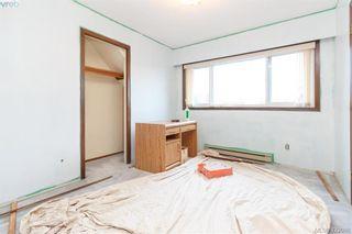 Photo 24: 3901 Lexington Ave in VICTORIA: SE Arbutus House for sale (Saanich East)  : MLS®# 835431