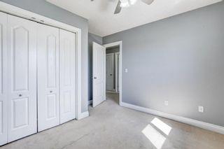 Photo 27: 158 Saddlemont Boulevard NE in Calgary: Saddle Ridge Detached for sale : MLS®# A1145866
