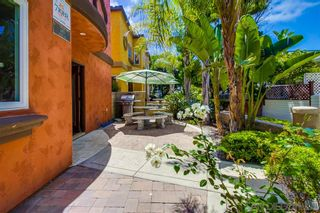 Photo 23: MISSION BEACH House for sale : 6 bedrooms : 745 Dover Court in San Diego
