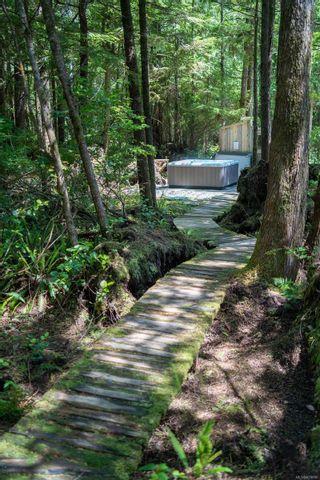 Photo 67: 1321 Pacific Rim Hwy in Tofino: PA Tofino House for sale (Port Alberni)  : MLS®# 878890