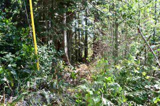 Photo 4: Lot 6 SANDY HOOK Road in Sechelt: Sechelt District Land for sale (Sunshine Coast)  : MLS®# R2569863