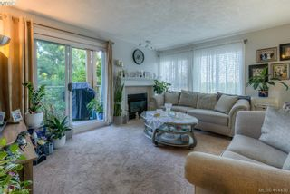 Photo 3: 309 490 Marsett Pl in VICTORIA: SW Royal Oak Condo for sale (Saanich West)  : MLS®# 822080