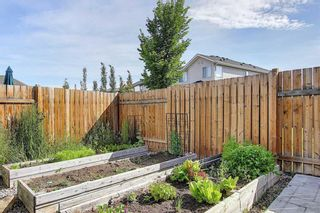 Photo 26: 1023 BRIGHTONCREST Green SE in Calgary: New Brighton Detached for sale : MLS®# A1014253