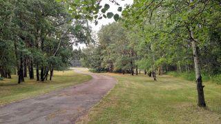 Photo 16: 51121 Range Road 270: Rural Parkland County House for sale : MLS®# E4248084