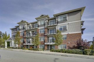"""Photo 1: 313 6480 195A Street in Surrey: Clayton Condo for sale in """"Salix"""" (Cloverdale)  : MLS®# R2324893"""