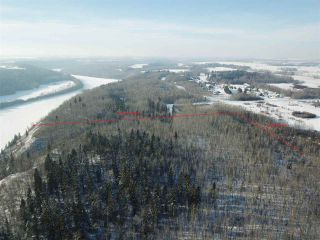 Photo 6: 50322 Rge Road 10: Rural Parkland County Rural Land/Vacant Lot for sale : MLS®# E4247117