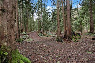 Photo 11: 1999 CAROL Road: Cultus Lake Land for sale : MLS®# R2529330