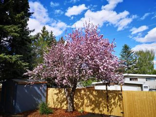 Photo 4: Kingsland-7132 5 Street SW-Calgary-