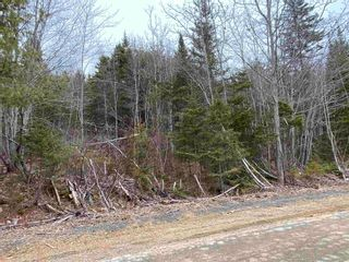 Photo 2: Lot 7 Lower Grant Road in Chester Basin: 405-Lunenburg County Vacant Land for sale (South Shore)  : MLS®# 202110749