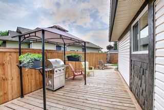 Photo 19: 110 Abalone Crescent NE in Calgary: Abbeydale Detached for sale : MLS®# A1127524