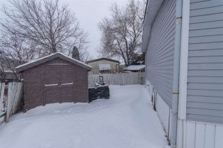 Photo 15: 1831 10770 Winterburn Road NW in Edmonton: Zone 59 Mobile for sale : MLS®# E4227749