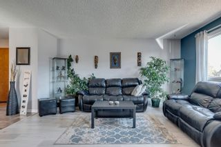 Photo 17: 14269 30 Street in Edmonton: Zone 35 House for sale : MLS®# E4261752