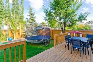 Photo 44: 307 CHAPARRAL RAVINE View SE in Calgary: Chaparral House for sale : MLS®# C4132756