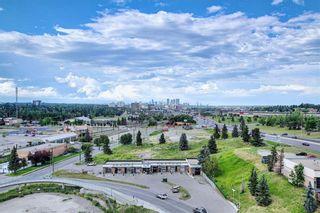 Photo 15: 1216 8710 Horton Road SW in Calgary: Haysboro Apartment for sale : MLS®# A1144532