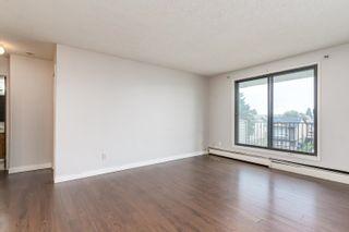 Photo 16:  in Edmonton: Zone 29 Condo for sale : MLS®# E4261180