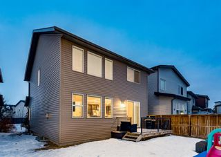 Photo 23: 198 Walden Terrace SE in Calgary: Walden Detached for sale : MLS®# A1076176