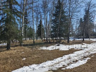 Photo 13: 0 NW9-33-5W5: Sundre Commercial Land for sale : MLS®# A1082207