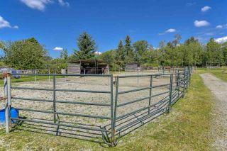 Photo 33: 12598 248 Street in Maple Ridge: Websters Corners House for sale : MLS®# R2479389