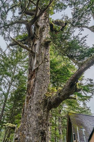 Photo 22: 22 1002 Peninsula Rd in : PA Ucluelet House for sale (Port Alberni)  : MLS®# 876703