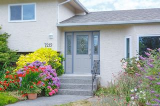 Photo 3: 7219 Tantalon Pl in Central Saanich: CS Brentwood Bay House for sale : MLS®# 845092