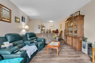 Photo 4: 305 377 Dogwood St in : CR Campbell River Central Condo for sale (Campbell River)  : MLS®# 872450
