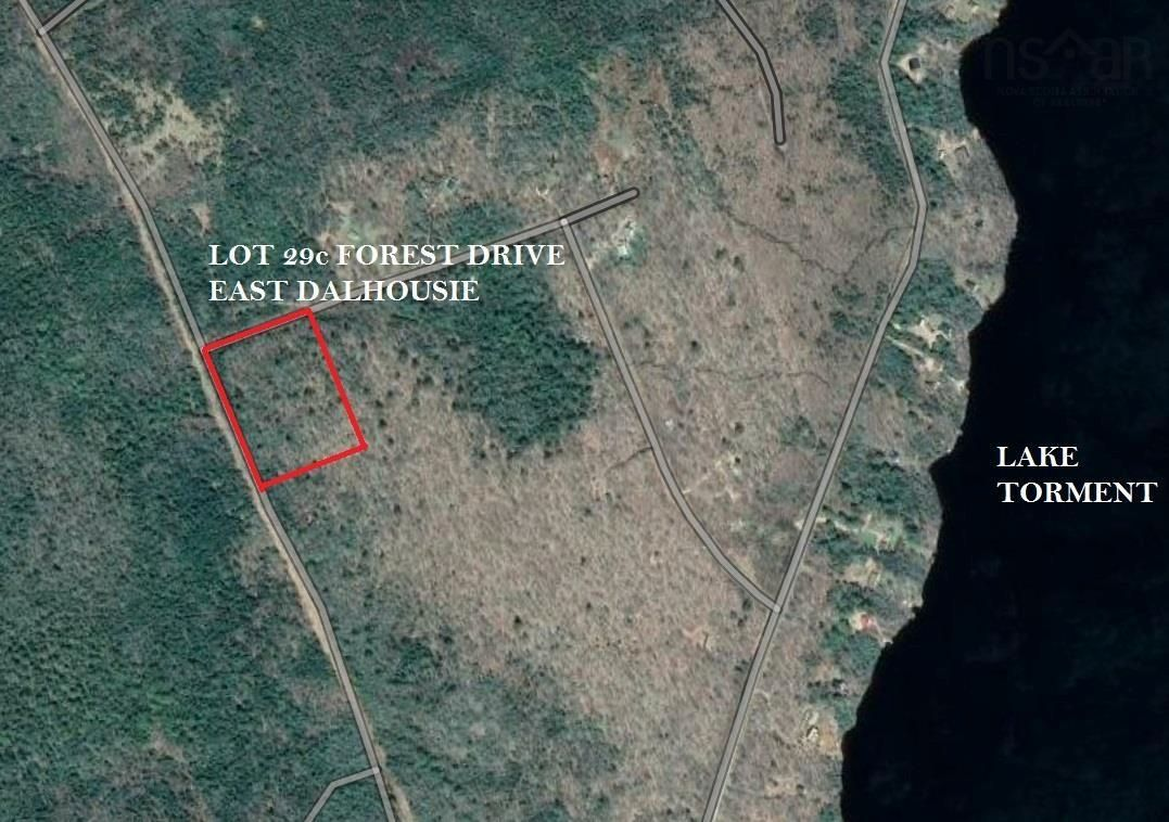 Main Photo: Lot 29C Forest Drive in East Dalhousie: 404-Kings County Vacant Land for sale (Annapolis Valley)  : MLS®# 202124675