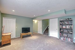 Photo 36: 73 Canals Circle SW: Airdrie Detached for sale : MLS®# A1104916