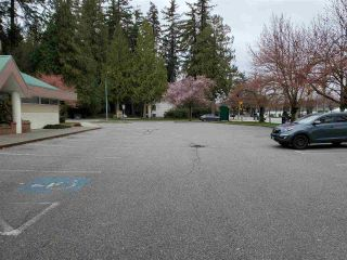 Photo 15: 103 12195 HARRIS Road in Pitt Meadows: Central Meadows Office for sale : MLS®# C8037491