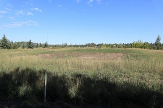 Photo 8: Hwy 622 RR 15: Rural Leduc County Rural Land/Vacant Lot for sale : MLS®# E4261453