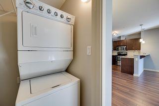 Photo 19: 243 308 AMBLESIDE Link in Edmonton: Zone 56 Condo for sale : MLS®# E4260650