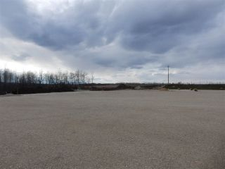 Photo 17: TWP ROAD 492 RANGE ROAD 234: Rural Leduc County Rural Land/Vacant Lot for sale : MLS®# E4218784