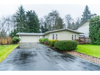 Photo 1: 4998 203A Street in Langley: Langley City House for sale : MLS®# R2419595