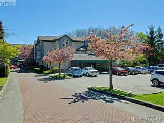Photo 20: 310 1485 Garnet Rd in VICTORIA: SE Cedar Hill Condo for sale (Saanich East)  : MLS®# 757974