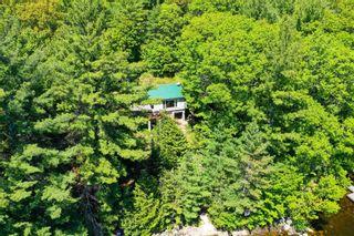 Photo 21: 1282 Woa Anstruther Lake View in North Kawartha: Rural North Kawartha House (Bungalow) for sale : MLS®# X5255516