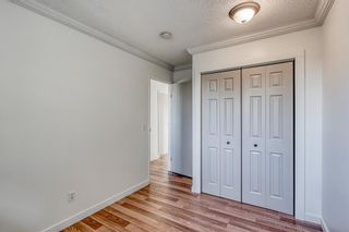 Photo 20: 135 Doverglen Place SE in Calgary: Dover Detached for sale : MLS®# A1058125