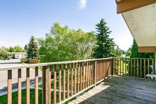 Photo 34:  in Edmonton: Zone 29 House for sale : MLS®# E4248358