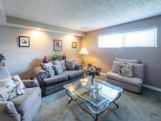 Photo 19: 223 Tanner Drive SE: Airdrie Detached for sale : MLS®# A1101335