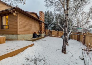 Photo 34: 124 QUEEN TAMARA Road SE in Calgary: Queensland Detached for sale : MLS®# A1086377