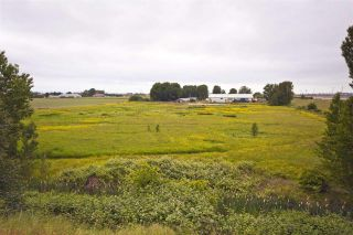 Photo 2: 2990 57B STREET in Delta: Agriculture for sale : MLS®# C8023503