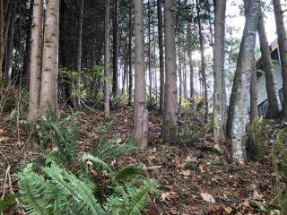 "Photo 5: LOT 89 SKOOKUMCHUK Road in Sechelt: Sechelt District Land for sale in ""SANDY HOOK"" (Sunshine Coast)  : MLS®# R2416111"