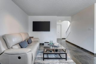 Photo 20: 16 OAKRIDGE Drive N: St. Albert House for sale : MLS®# E4258705